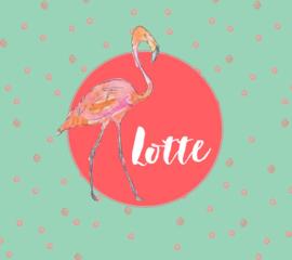 Lotte / 5 mei 2017