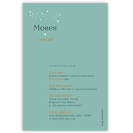 Regenboog geboortekaartje MOSES