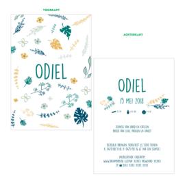 Blaadjes geboortekaartje ODIEL