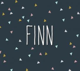 Finn / 28 augustus 2015