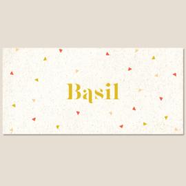 Driehoekjes geboortekaartje BASIL