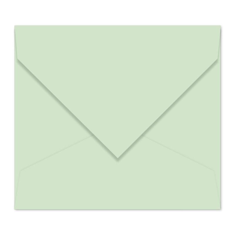 Munt envelop