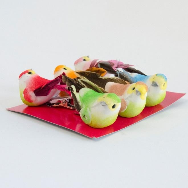 Set van 6 kleurrijke kleine vogels