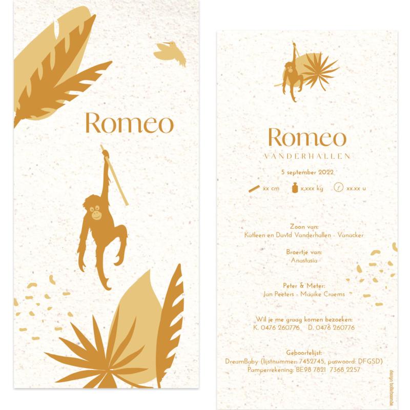Orang-oeton - eco papier |  geboortekaartje Romeo
