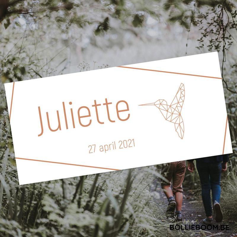 Koperfolie   Juliette   27 april 2021