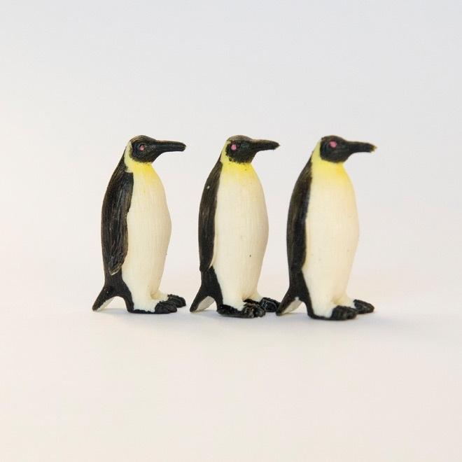Miniatuur pinguin