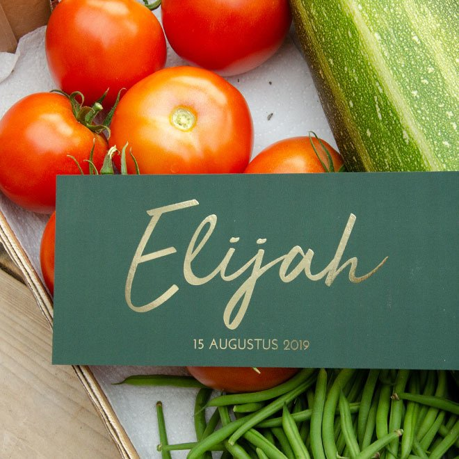 Elijah   15 augustus 2019