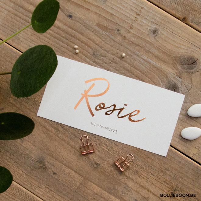 Rosie | 25 Januari 2019