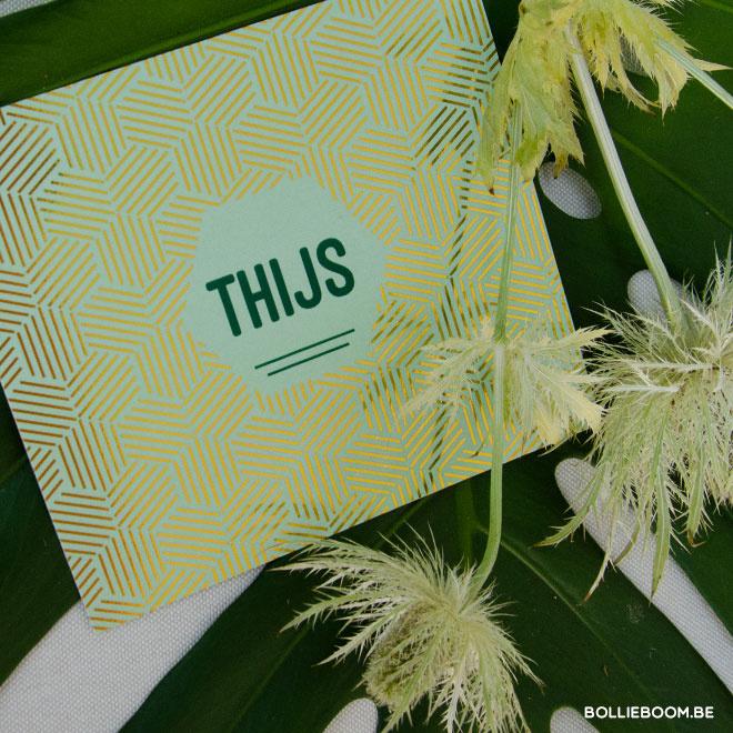 Thijs | 30 juni 2019