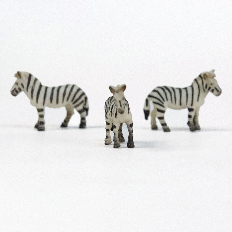 Miniatuur zebra