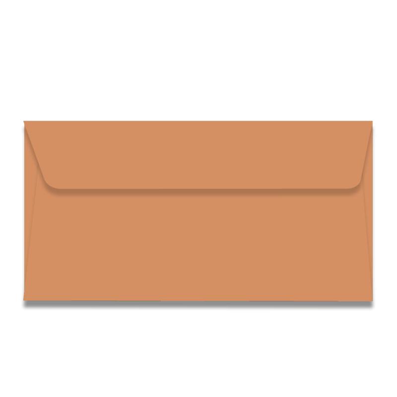 Roosbruine  US envelop