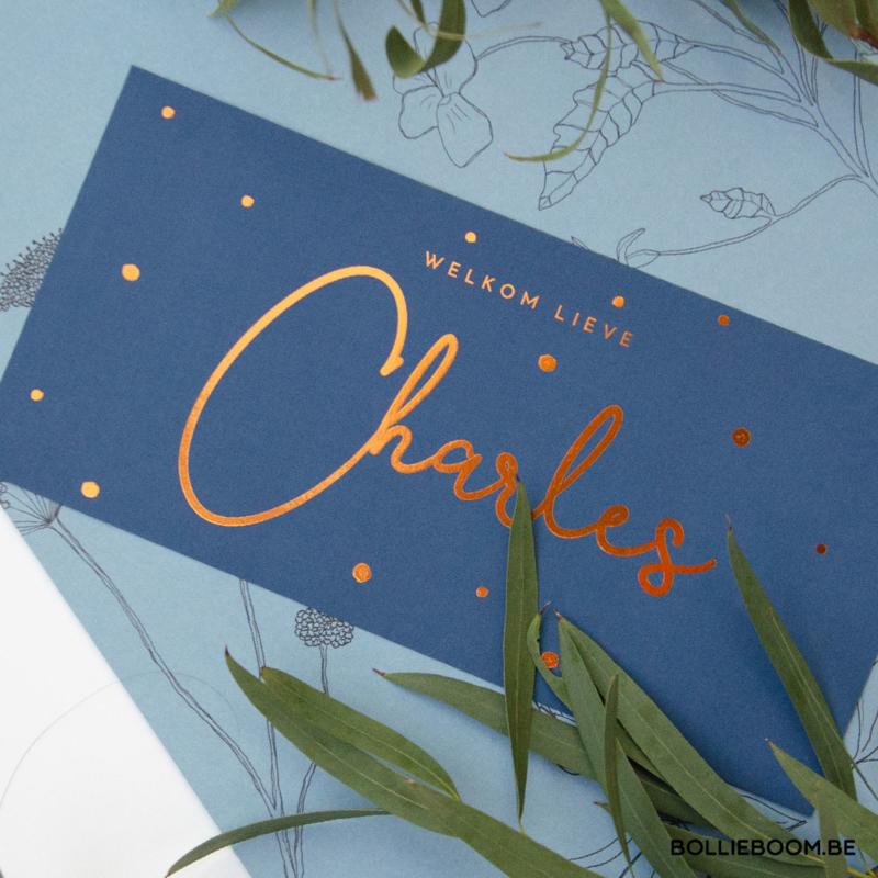 Stipjes  | Charles | 8 mei 2020