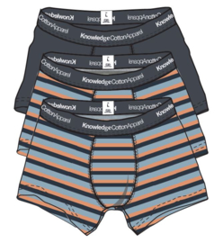 Knowledge Cotton Apparel - Maple 3 pack Block Striped Underwear Asley Blue