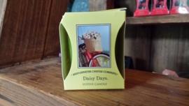 Daisy Days Geurkaars