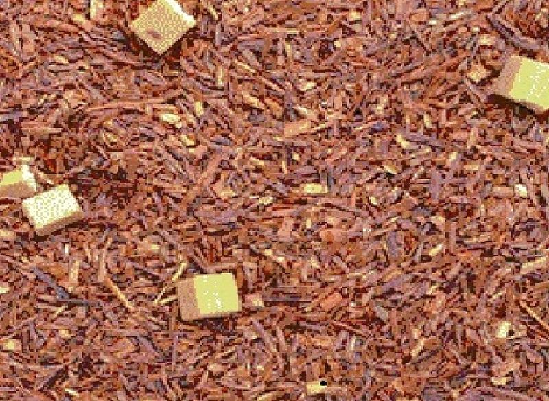 Caramel - Rooibos Thee