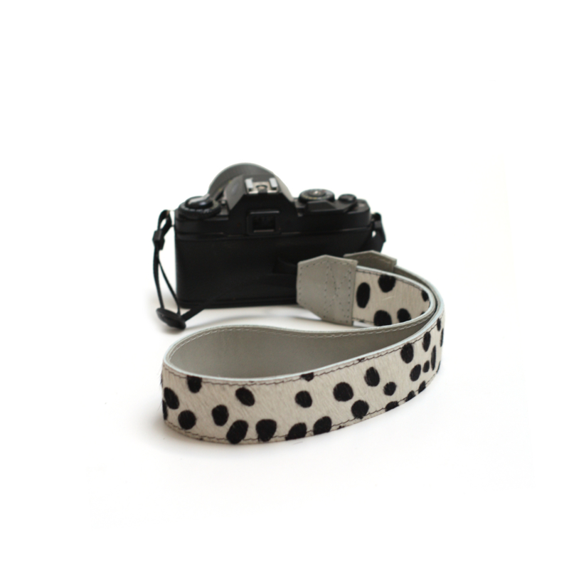 Camerastrap dalmatian - light gray
