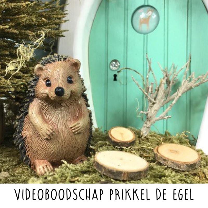 Ingesproken videoboodschap van Prikkel de Egel (op maat naar je wensen gemaakt)