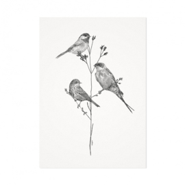 Mélisse Prints | One, two, three birds