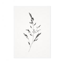 Mélisse Prints | Het beemdgras