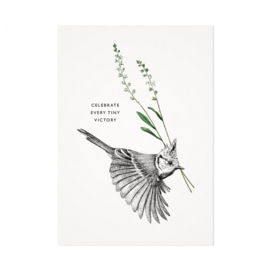 Mélisse Prints | Sweet bird: Kuifmees