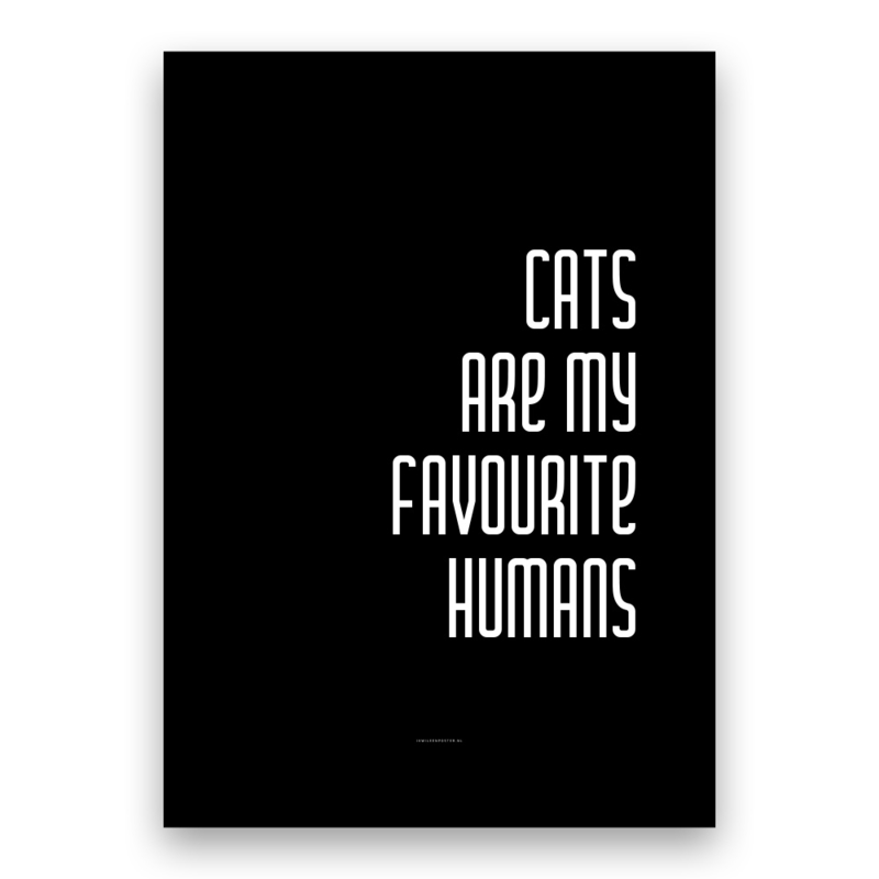 Cats are my favourite humans