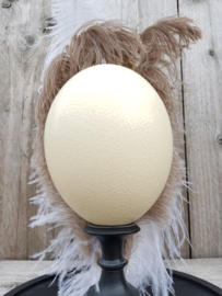 Glass Dome Ostrich Egg with feathers on stand NoW4