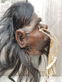 Wunderkammer Dome with Superb Replica Jivaro Shrunken Head Totem on stand NoW1