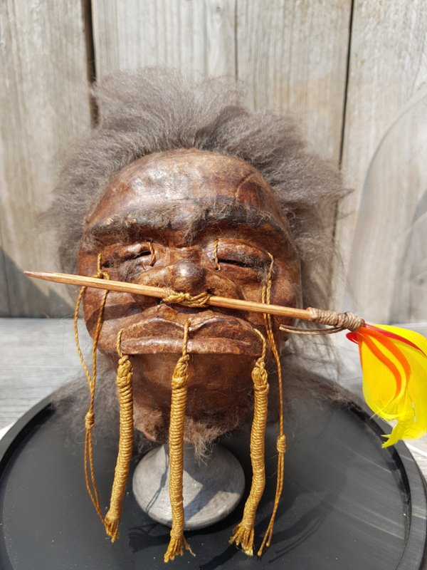 Glass Dome with Replica Jivaro Arrow-nose Warrior Shrunken Head on Stand NoW3