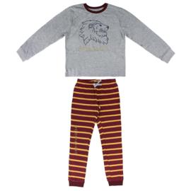 Harry Potter Jersey katoenen pyjama/ Beschikbaar vanaf 4e week april