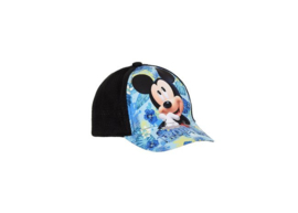 Mickey Mouse Pet