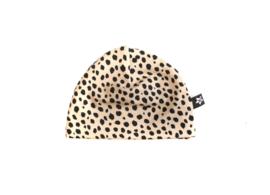 Mutsje   Cheetah Zand
