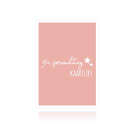 Bewaarbundel Yn ferwachting kaartsjes sterren roze
