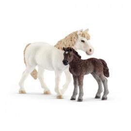 Schleich pony merrie met veulen