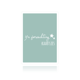 Bewaarbundel Yn ferwachting kaartsjes blauw sterren