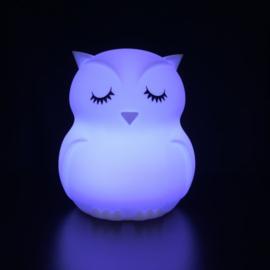 Nachtlampje uil