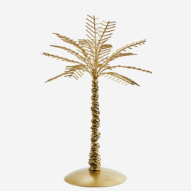 IRON PALM TREE