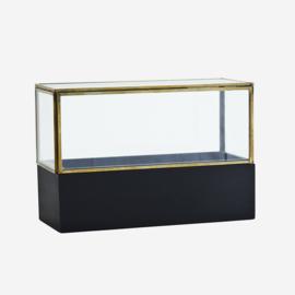 GLASS BOX W/ WOODEN BASE 26 CM
