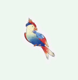 CUT OUT CARD PARROT - THE GIFT LABEL