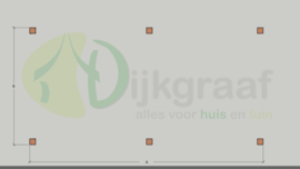 Veranda DeLuxe Douglas maatwerk max. 585x300 cm