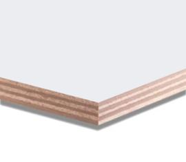 Okoume Garant Multiplex 10 mm gegrond 250x25 cm