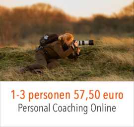 ONLINE workshops & Coaching
