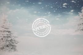 Winterlandschap - ook geschikt voor kerst