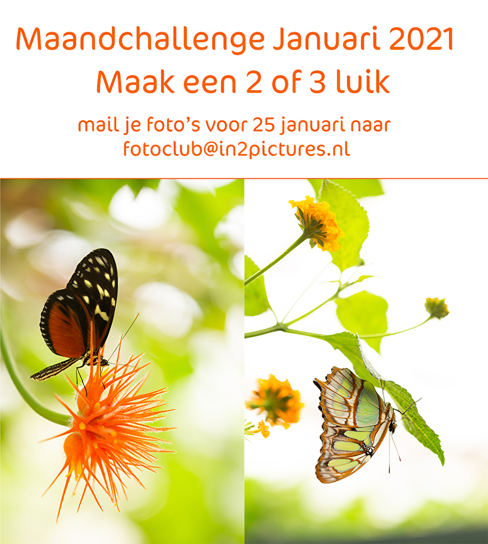 maandchallenge januari 2021 in2pictures.nl fotografie 2 of 3 luik