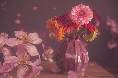 Werk aan de muur - categorie close ups - roze paarse bloemen in2pictures.nl fotoschool