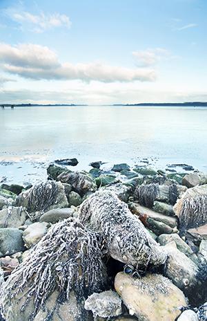 Werk aan de muur - categorie Zeeland - winter aan het Veerse Meer - in2pictures.nl fotoschool