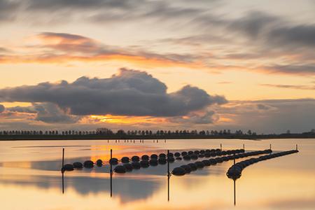 Werk aan de muur - categorie Zeeland - mosselkwekerij aan het Veerse Meer - in2pictures.nl fotoschool