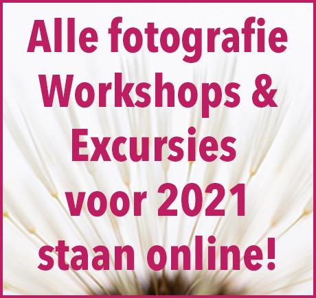Workshops & excursies digitale fotografie bij in2pictures.nl fotografie