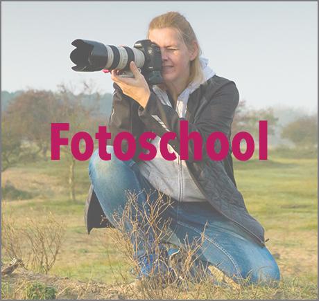 in2pictures fotoschool voor foto workshops en foto excursies