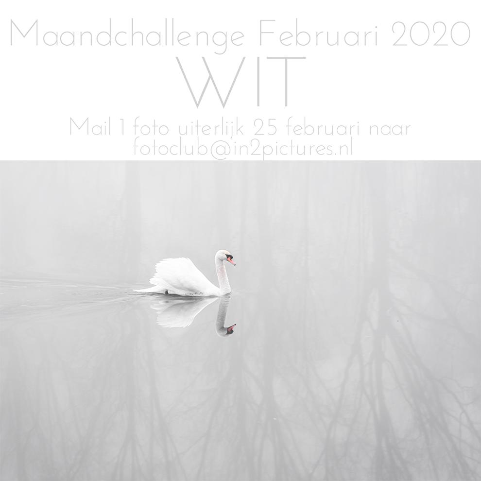 Maanchallenge Februari 2020 in2pictures.nl fotoclub thema WIT