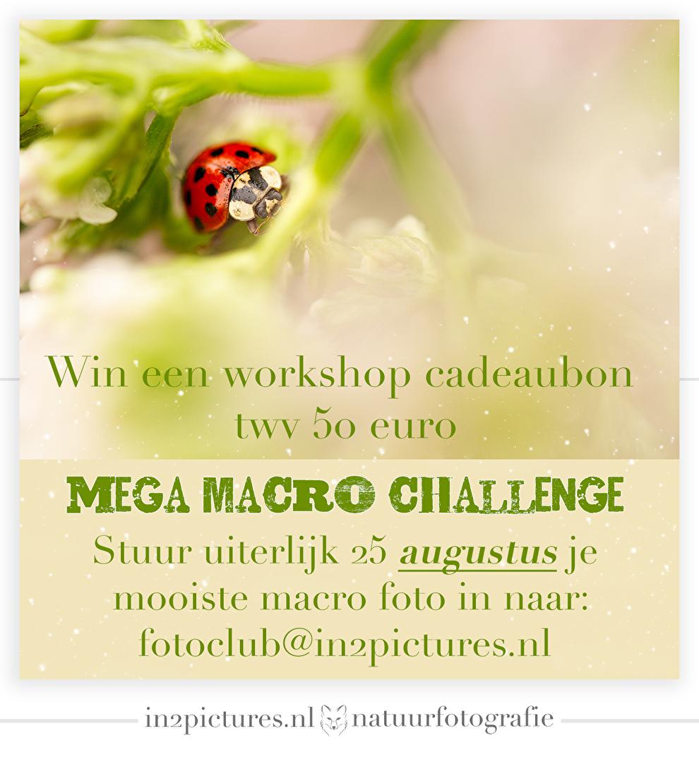Mega Macro Challenge, Fotografie uitdaging, Macrofotografie